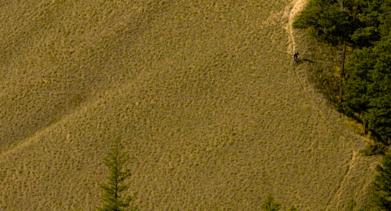 Knolly Warden - Williams Lake, British Columbia