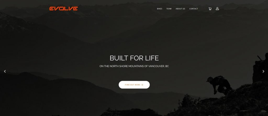 Screenshot Evolve Bikes Homepage